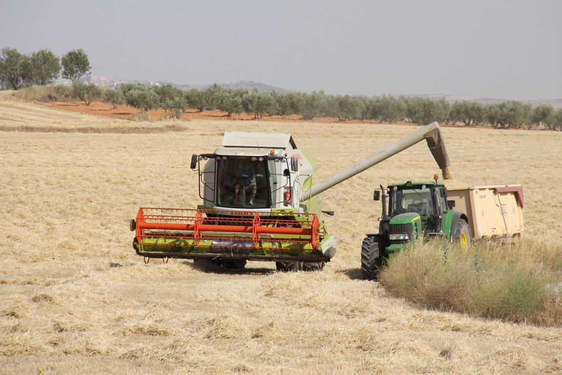 El COPA-Cogeca prevé menos trigo y colza en la UE-28 y bajos ingresos para los productores