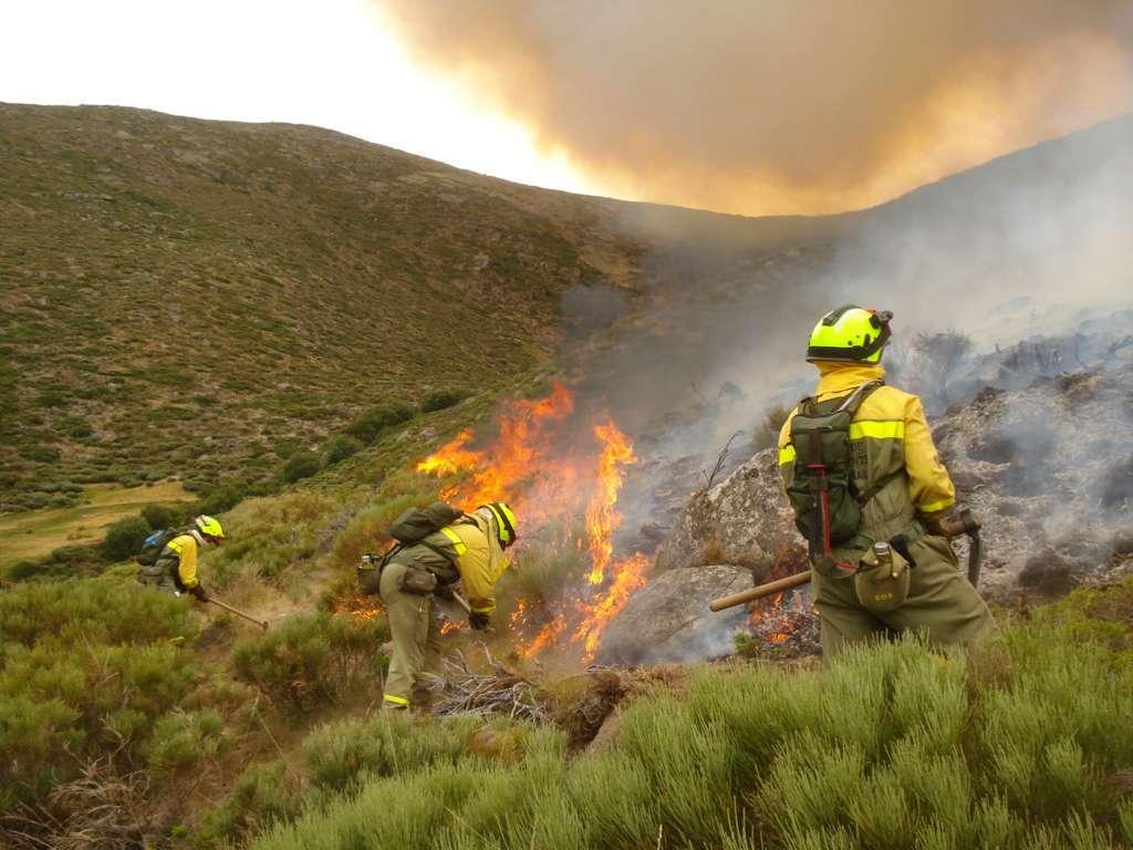 El MITECO estrena competencias forestales con la presentación del dispositivo de lucha contra incendios