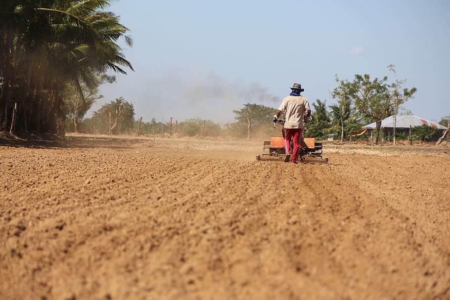 Primer incremento del paro agrícola en un mes de mayo desde el año 2009