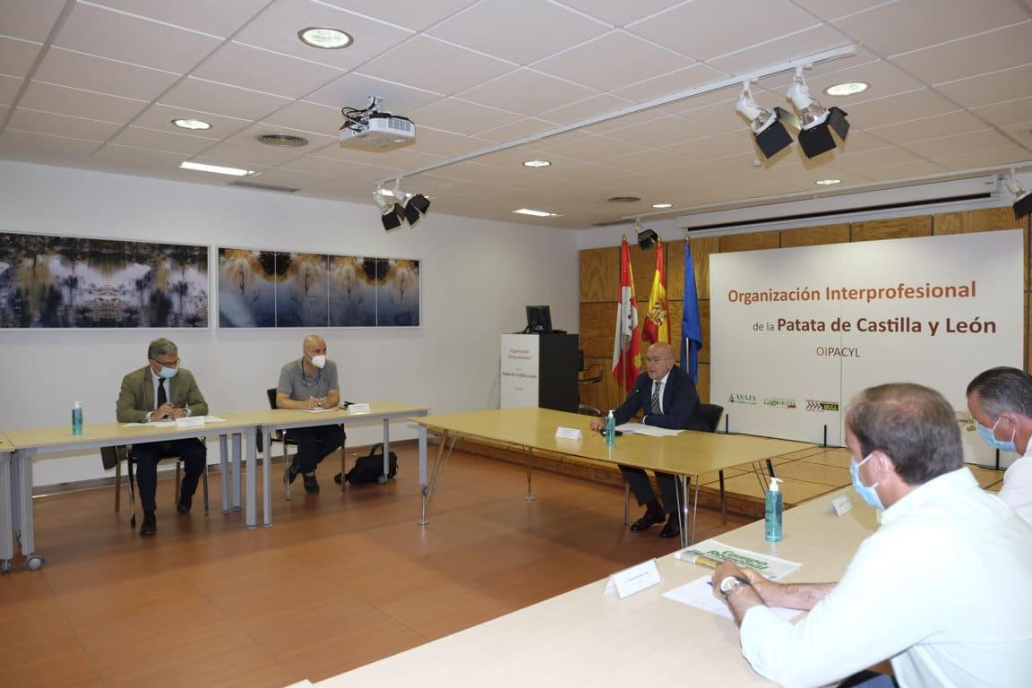 Castilla y León contará por fin con la primera organización interprofesional de la patata en España