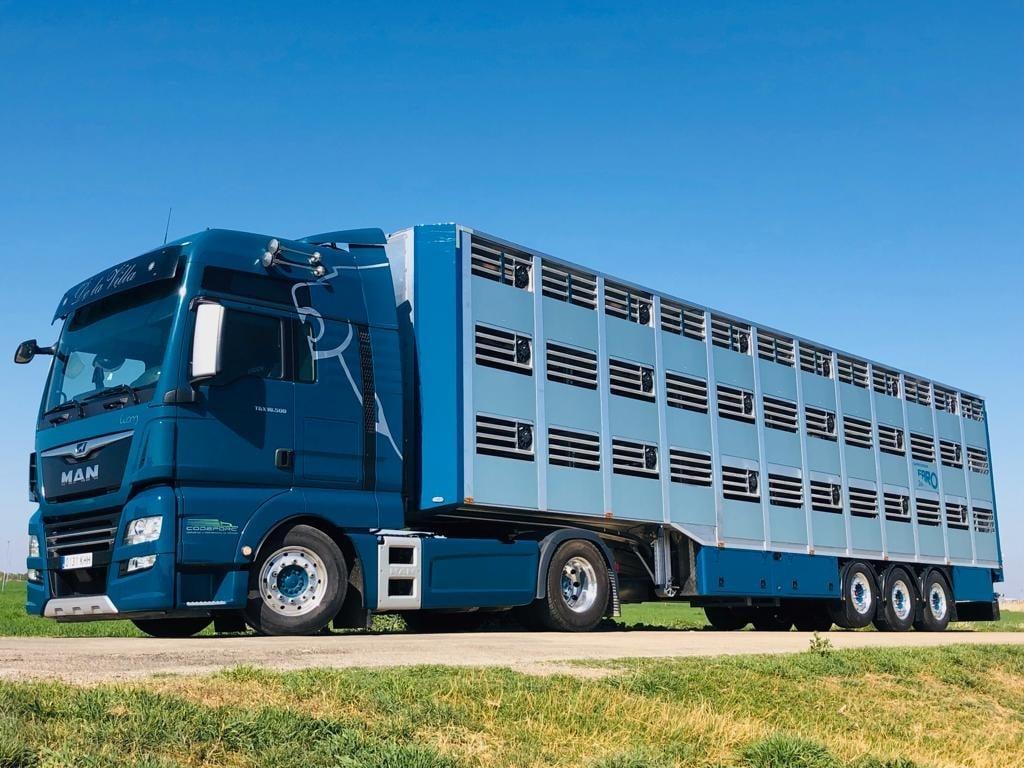 El MAPA y las CC. AA. vigilan la temperatura de los transportes de ganado durante el verano