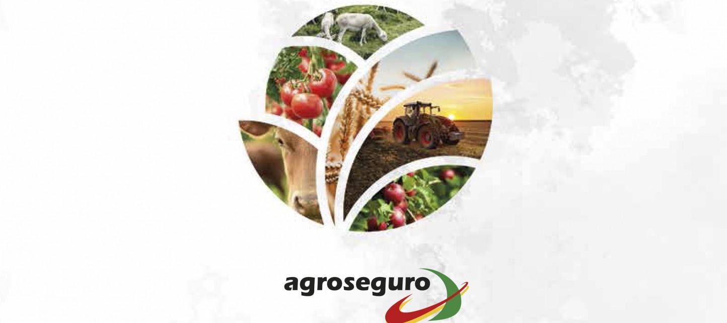 Casi 14.200 M€, cifra récord de capital asegurado de la producción agraria durante el ejercicio de 2019