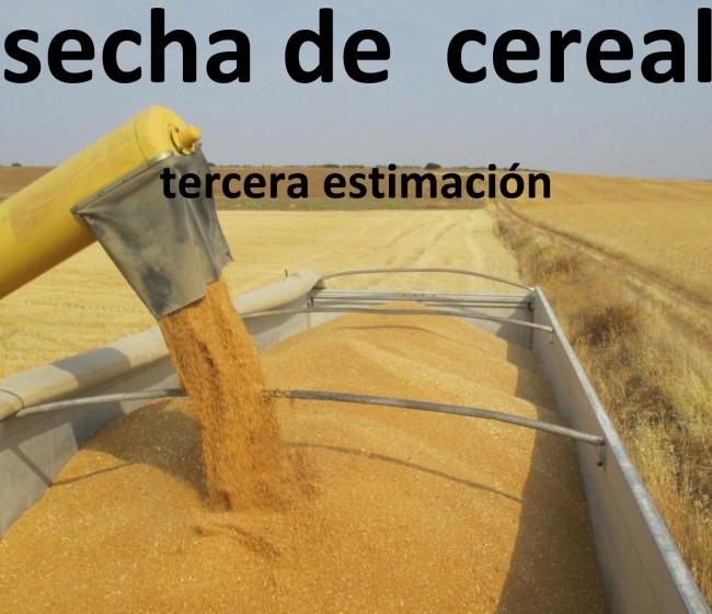 Cereales: la tercera estimación de Cooperativas sitúa la cosecha en 26,7 Mt