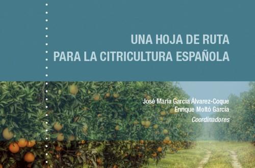 Más de 40 expertos plantean una hoja de ruta para el sector citrícola