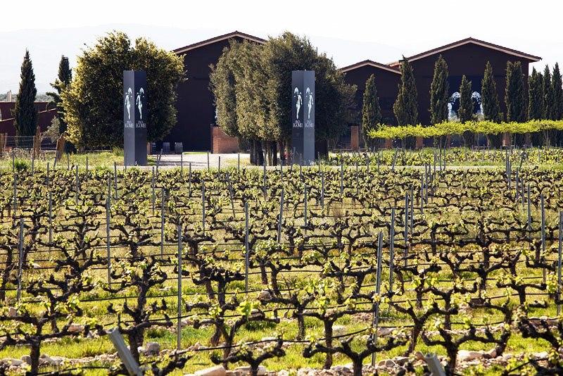 Un centenar de parajes, «Viñedos Singulares» de la DOCa Rioja