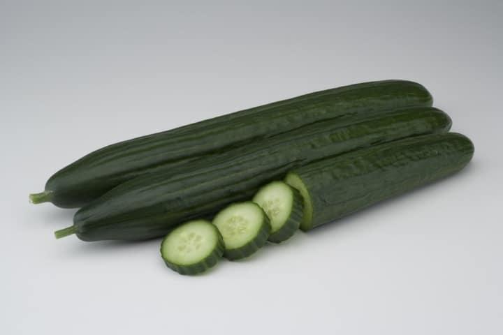 Remo F1 y Sedal F1, las nuevas variedades de pepino largo de Basf Vegetable Seeds