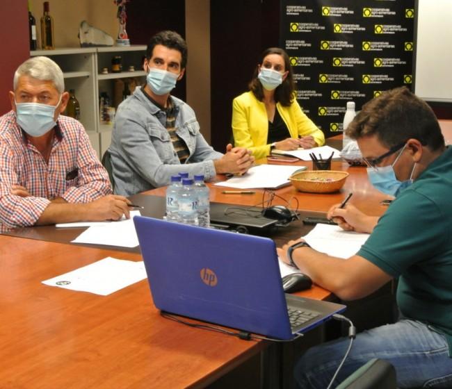 Cooperativas de Extremadura pide mejoras en el seguro de tomate para industria