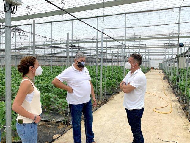 Koppert mostrará sus innovaciones en control biológico en la finca de Criado y López