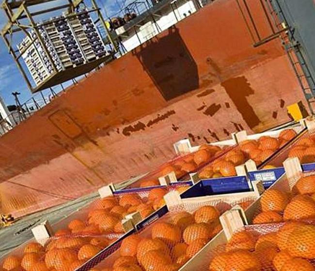 La UNIÓ detecta por segundo año consecutivo cítricos importados con pesticidas