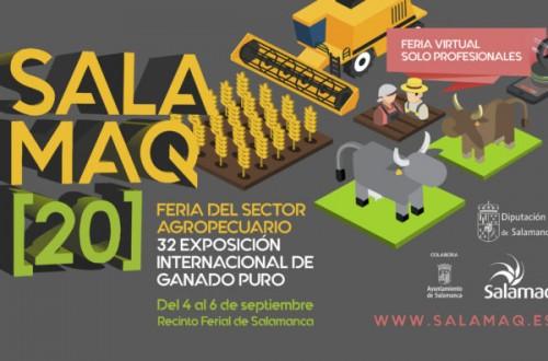 Salamaq 2020 abre sus puertas por primera vez en versión virtual
