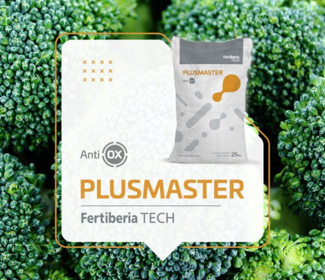 Plusmaster, de Fertiberia Tech, con tecnología AntiOX, aumenta el nivel de antioxidantes en las plantas