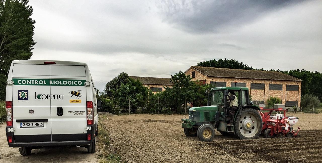 Koppert recomienda Ceres-Mix para impulsar la emergencia de la planta