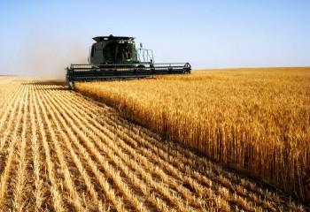 Fertilización eficiente en cereal con D-Coder Top