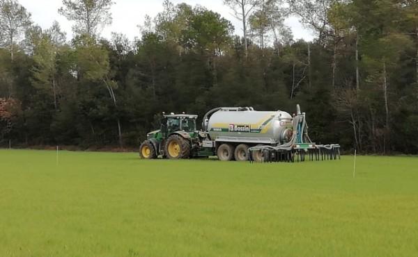 Estrategias sostenibles de fertilización en cereal de invierno