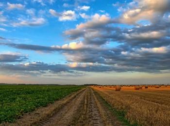 El agro empezará a recibir unos 3.420 M€ de anticipo de ayudas PAC 2020 desde el próximo 16 de octubre