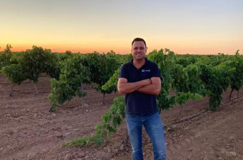 Una fertilización de calidad en los viñedos manchegos, fundamental para obtener elevadas producciones
