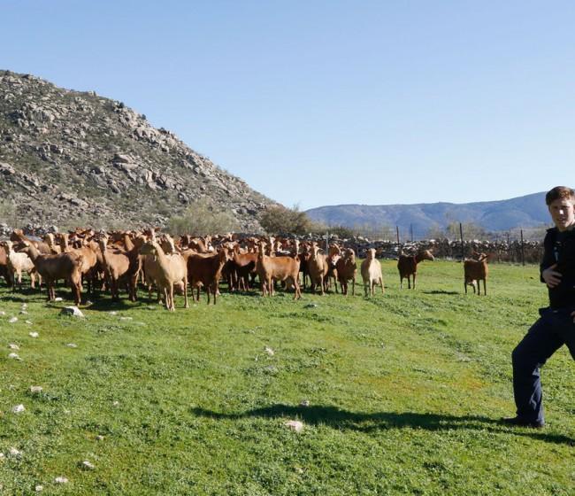 Foro de Acción Rural presenta 65 propuestas para alcanzar los Objetivos de Desarrollo Sostenible