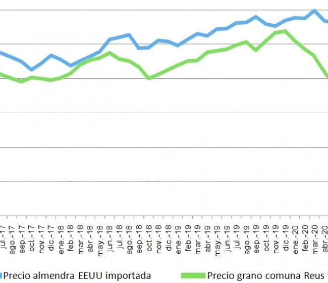 La almendra premium española cotiza un 33% por debajo que la almendra low-cost de California, según un estudio de COAG