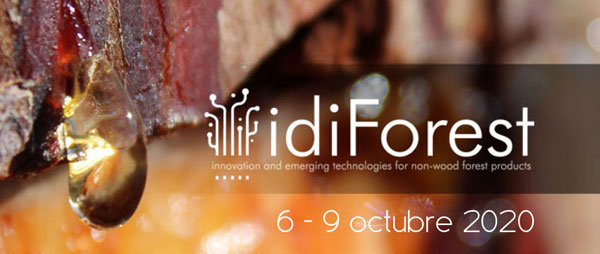 Sector forestal: Cesefor organiza el evento online idiForest