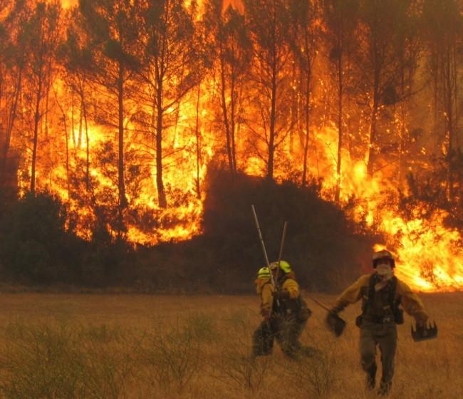Balance incendios: un 21% menos de superficie forestal quemada en esta campaña