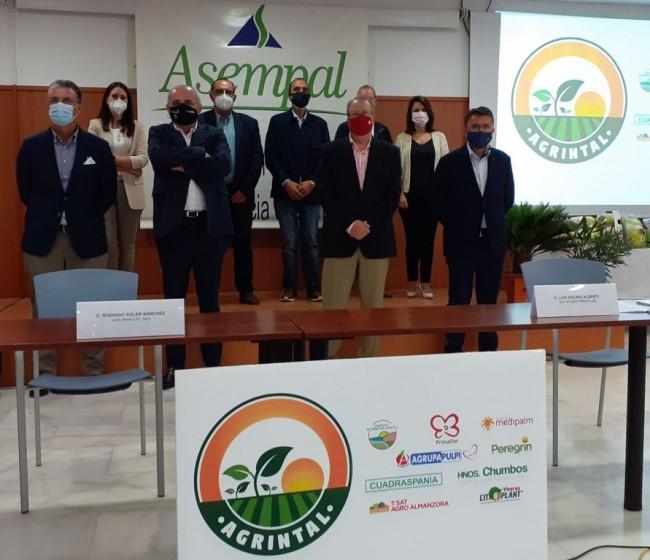 Nace AGRINTAL, Asociación de Empresas Agroalimentarias de Agricultura Intensiva al Aire Libre de Almería