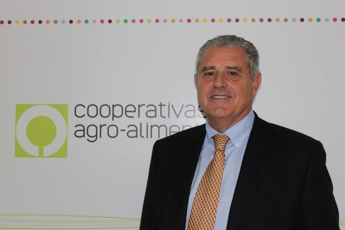 Las exigencias del Pacto Verde Europeo encarecerán los costes de producción. Por Cirilo Arnandis