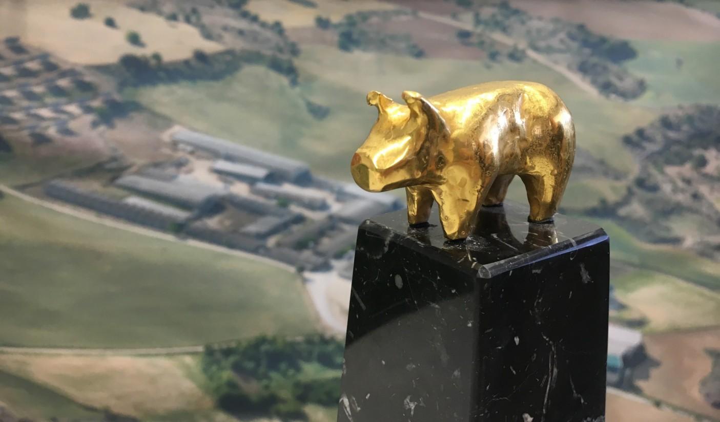 Explotaciones de catorce provincias agrupan 176 nominaciones a los Porc d'Or 2020