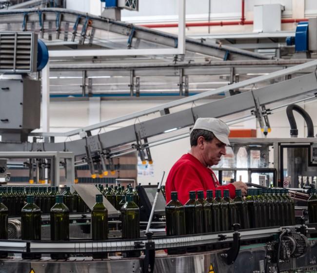Competencia recomienda rigor en las medidas de la futura norma de comercialización de aceite de oliva