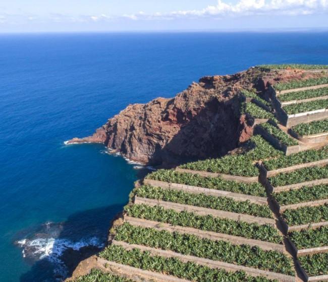Una semana muy importante para la agricultura de las Islas Canarias, por Asprocan