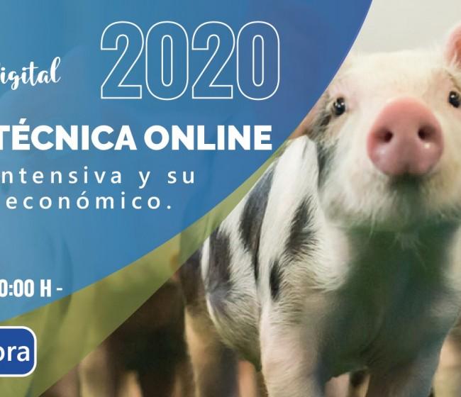 La ganadería intensiva y su entorno socioeconómico, a debate en la segunda jornada digital de Figan 2021