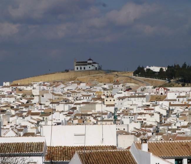 Organizaciones agrarias y cooperativas andaluzas piden que no haya modificaciones en el periodo transitorio de la PAC