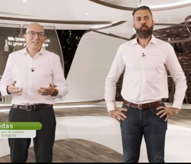 Syngenta presenta sus novedades en brassicas y cultivos de hoja