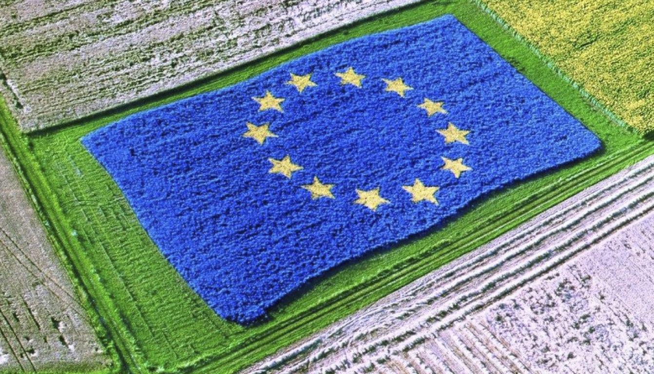 El Parlamento Europeo debate sobre la PAC: por una reforma también social