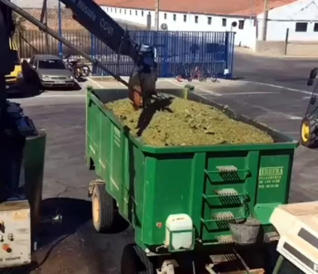 El MAPA plantea reducir en 1,15 Mhl adicionales la oferta de vino elevando la destilación