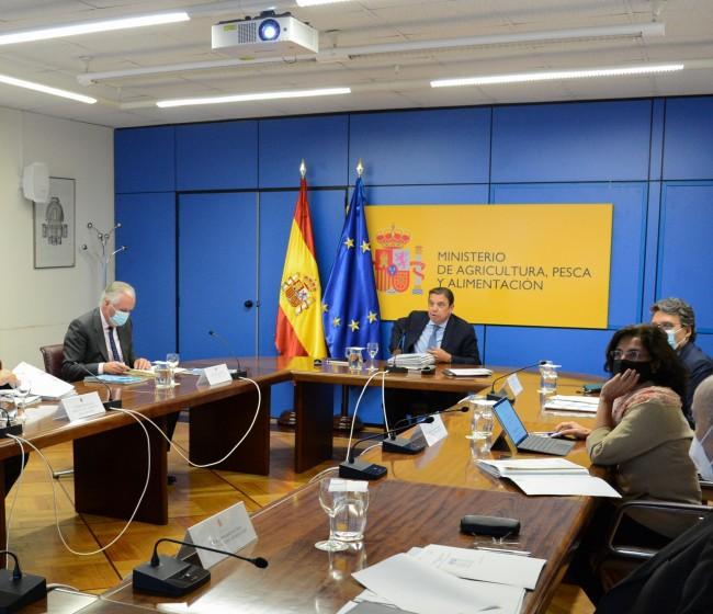 España solicita a la CE la activación de medidas de apoyo para el sector del vacuno de carne