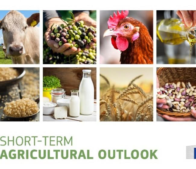 La CE ve positiva la situación general del sector agroalimentario pese a la incertidumbre del Covid-19