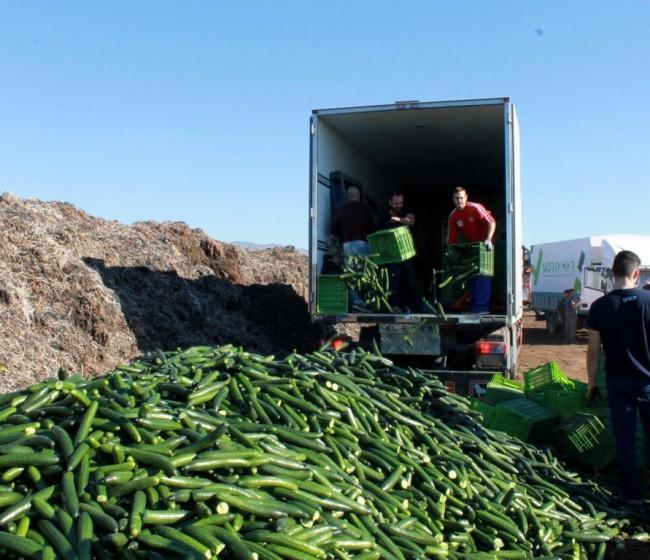 Junta y sector de Almería no descartan denunciar ante la OLAF la competencia desleal hortofrutícola de países terceros