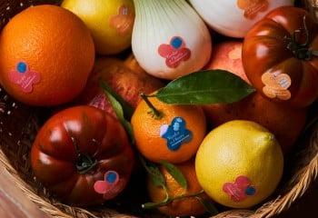 Frutas y hortalizas de temporada promocionarán la huerta valenciana