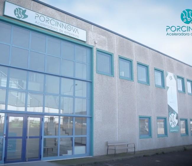 Porcinnova pone en marcha la segunda ronda su programa acelerador