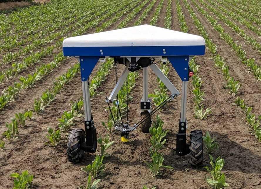 Un robot para eliminar malas hierbas gana el premio del programa EIT Food