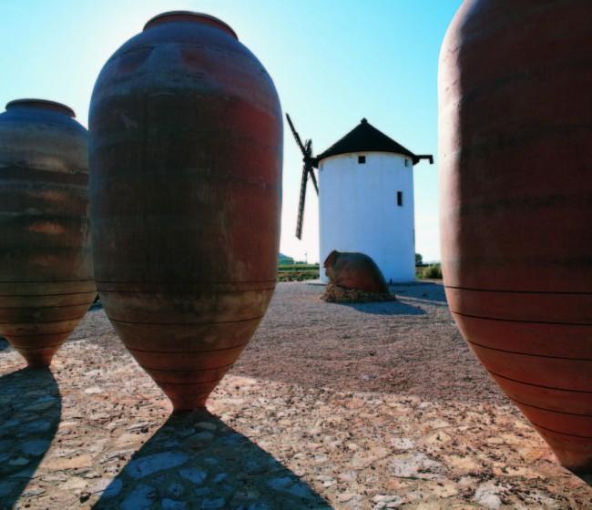 Empresas vitivinícolas castellano-manchegas piden crear una interprofesional regional