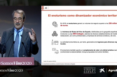 La OIVE presenta #SomosVino2020, un análisis sobre el presente y futuro del sector vitivinícola