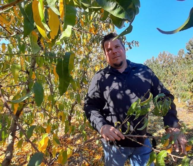 «Los fruticultores leridanos cumplimos la normativa laboral», por Sergi Balué