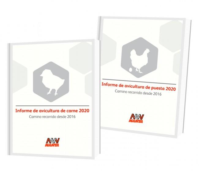 Nanta informa de la evolución del uso de antibióticos en la producción avícola