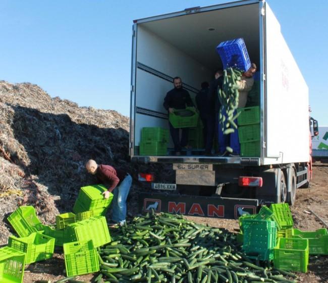 FEPEX pide nuevas medidas de gestión de crisis para el sector hortofrutícola