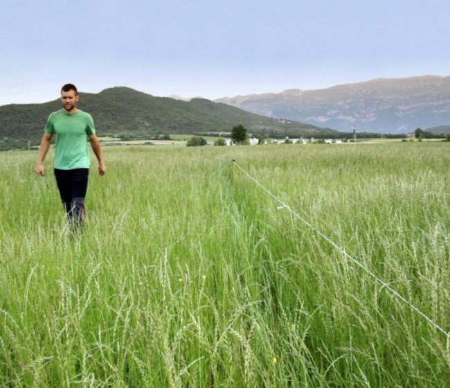 Webinar de ALAS sobre innovación, tecnología y digitalización para el futuro de la agricultura española