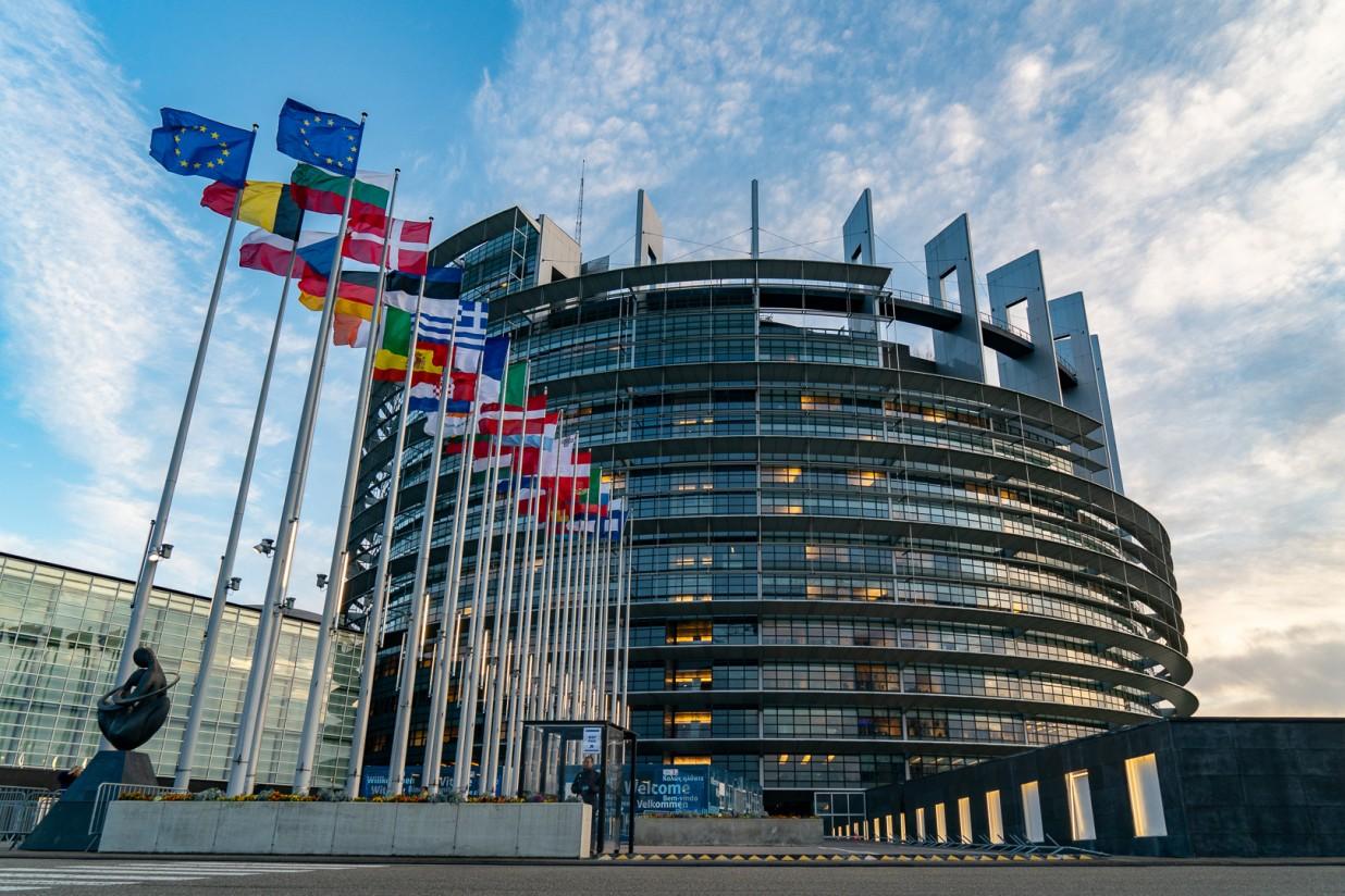 La Comisión de Agricultura del PE respalda la reglamentación de la PAC transitoria 2021-2022
