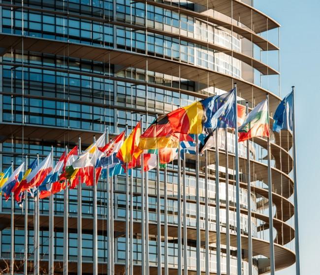 """Eurodiputados piden a la CE que publique la evaluación de impacto de las Estrategias """"De la granja a la mesa """" y """"Biodiversidad"""""""