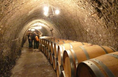 Rutas del Vino de España prepara su estrategia para 2021