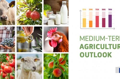 Perspectivas 2020-2030: resiliencia del sector agroalimentario de la UE a pesar de los impactos del Covid-19